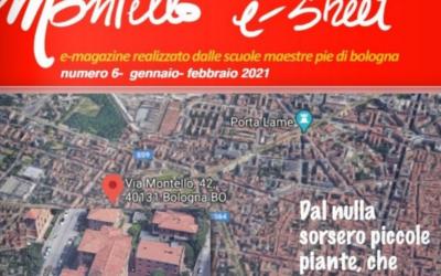 Montello e-Street n. 6